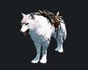 하얀밤 늑대